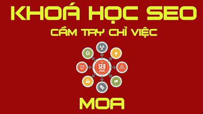 Khóa học SEO chuyên nghiệp tại MOA