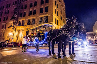two dark brown horses pulling a carriage lit with blue Christmas lights in Saint Joseph Missouri