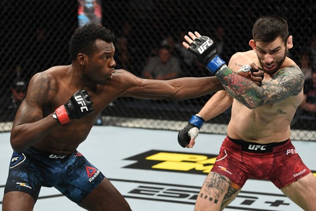 UFC Prague Dwight Grant stops Carlo Pedersoli Jr. In The First Round