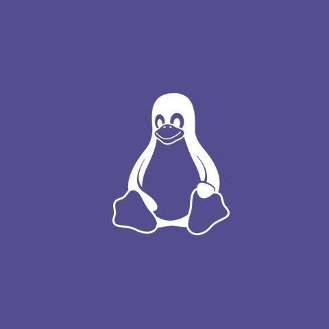 Linux Distro Atau Phoenix OS?