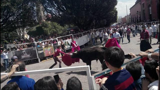 festival marquesada 2019 Salvatierra