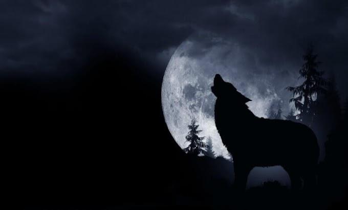Πανσέληνος του λύκου: Η πρώτη πανσέληνος του 2020