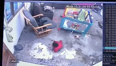 Video Shows Cat Sprinting Over And Saving Baby Who Was About To Fall Down The Stairs