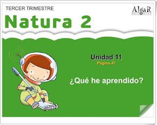 https://bromera.com/tl_files/activitatsdigitals/natura_2c_PF/Natura2-U12-A10_cas.swf
