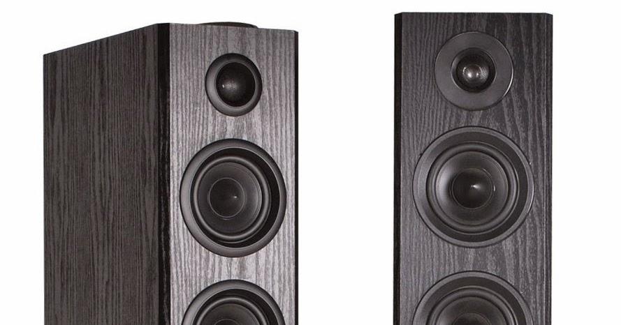 Klipsch Rsw 12: Klipsch VM Audio EXAT31 Black Floorstanding Powered