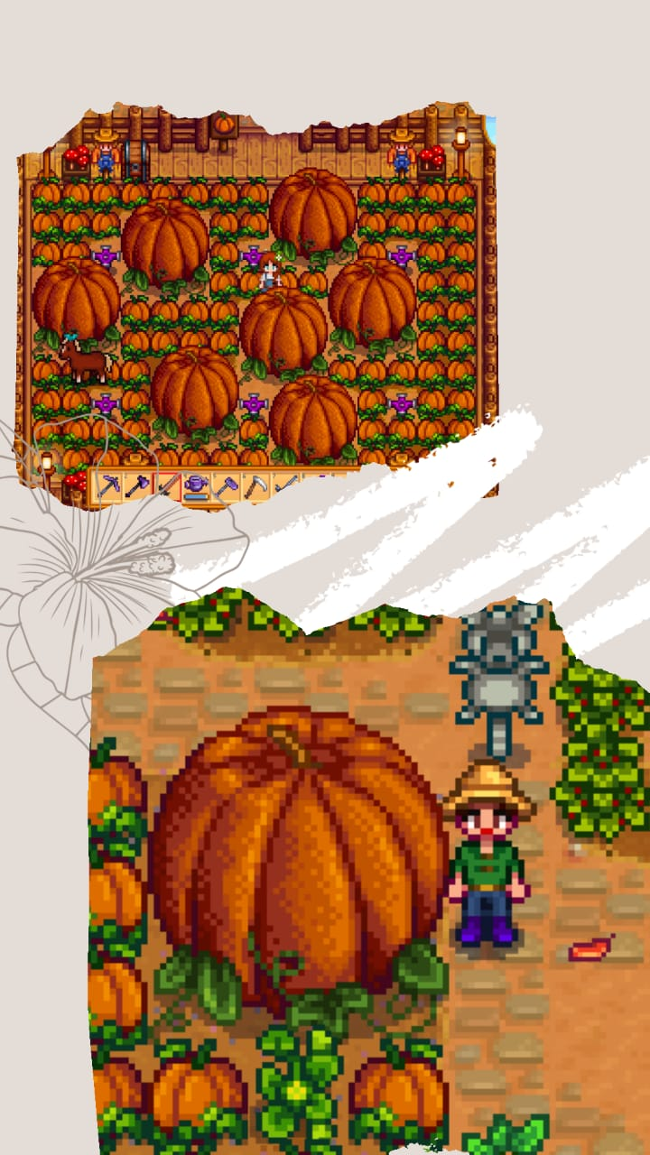 pumpkin-labu-stardew valley