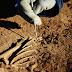 اكتشاف بقايا أول ديناصور مائي في العالم بالجنوب الشرقي