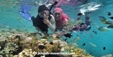 aktivitas snorkeling pulau harapan