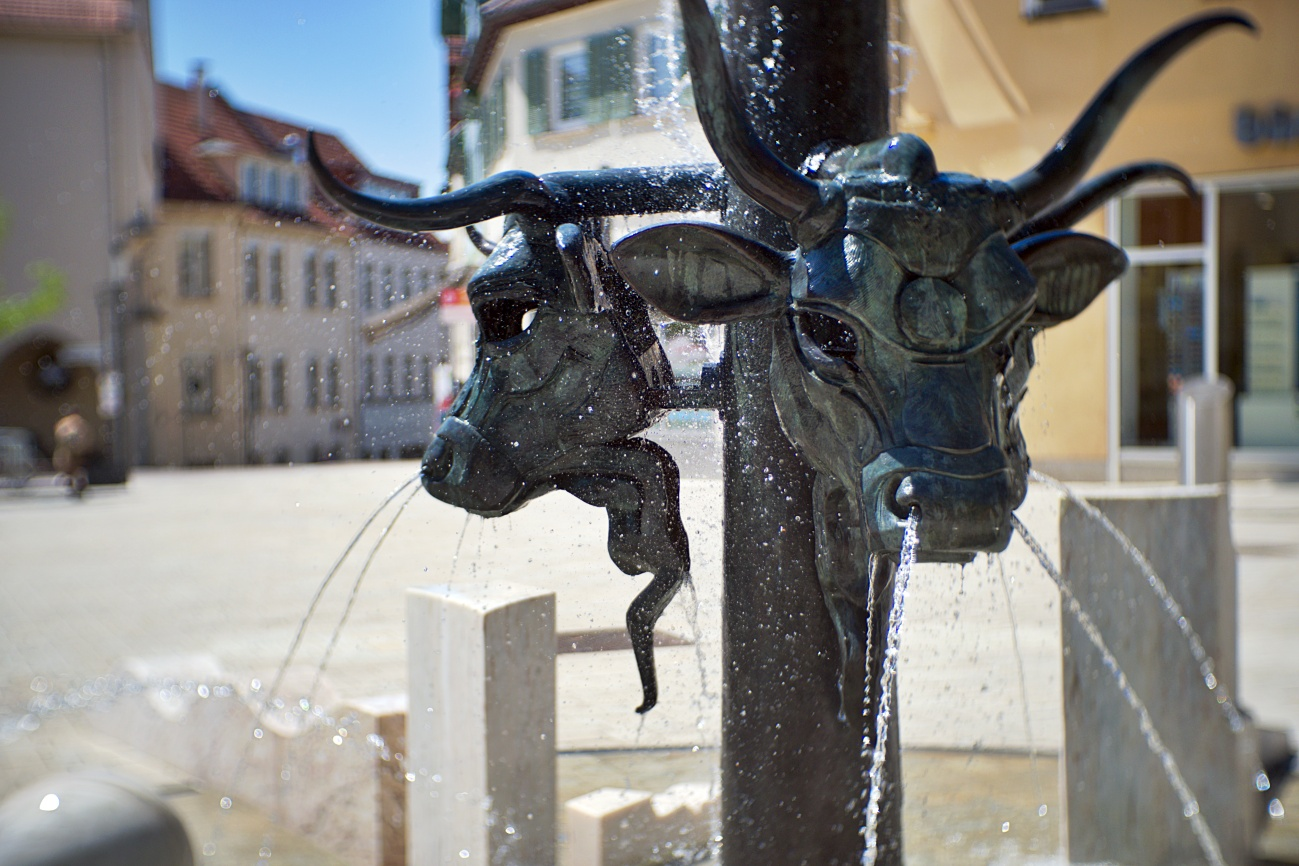 Bild des Tages #96 — Ochsenbrunnen in Nürtingen