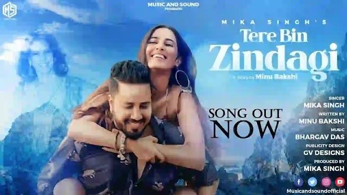 TERE BIN ZINDAGI LYRICS - Mika Singh | New Hindi Song 2021|