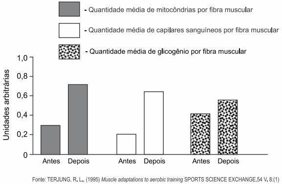 O gráfico apresenta as variações de três parâmetros adaptativos de músculo estriado esquelético após algum tempo de treinamento físico aeróbico.