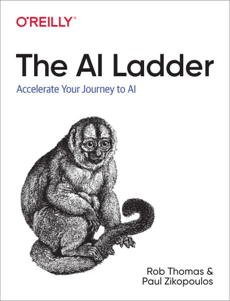 the ai lader pdf