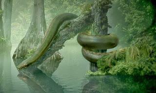 La Titanoboa en su hábitat natural
