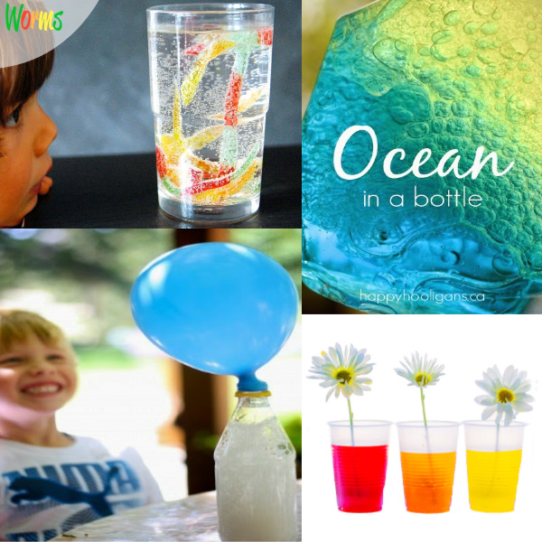 30+ science experiments perfect for young kids #sciencefortoddlers #scienceforpreschoolers #sciencefortoddlerseasy ##scienceexperimentsforkids #scienceexperiments #sciencefairprojects #scienceexperimentskidselementary #growingajeweledrose #sciencefairprojectsforelemetary