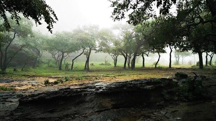 Pachmarhi..!! A Hill Station Of Madhya Pradesh, INDIA