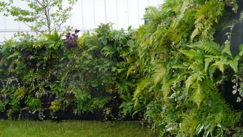 C mo crear un jard n vertical con woolly pocket maria for Jardin vertical reciclado