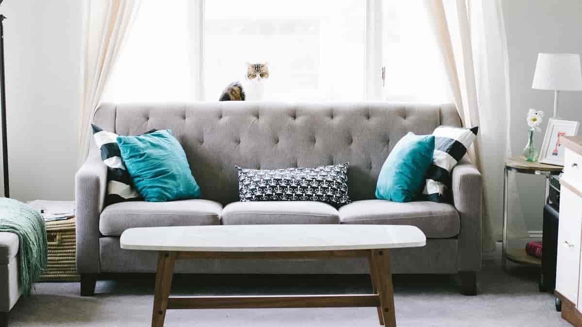 Como limpar o sofá de suede