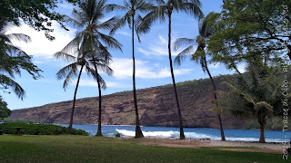 Sorprendenti isole Hawaii