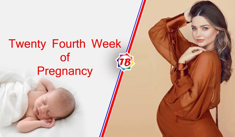 Twenty Fourth Week of Pregnancy