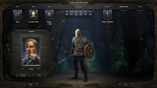 One Guy, Too Many Games: Pillars of Eternity: Review