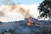 Μεγάλη φωτιά στα Παλιάμπελα Πιερίας (φωτογραφίες)