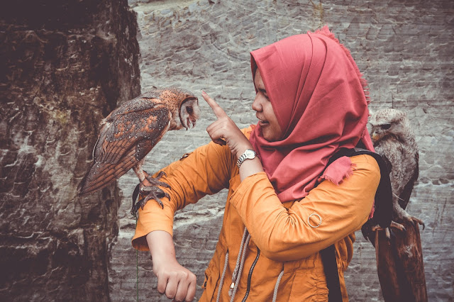Woman Holds Owl