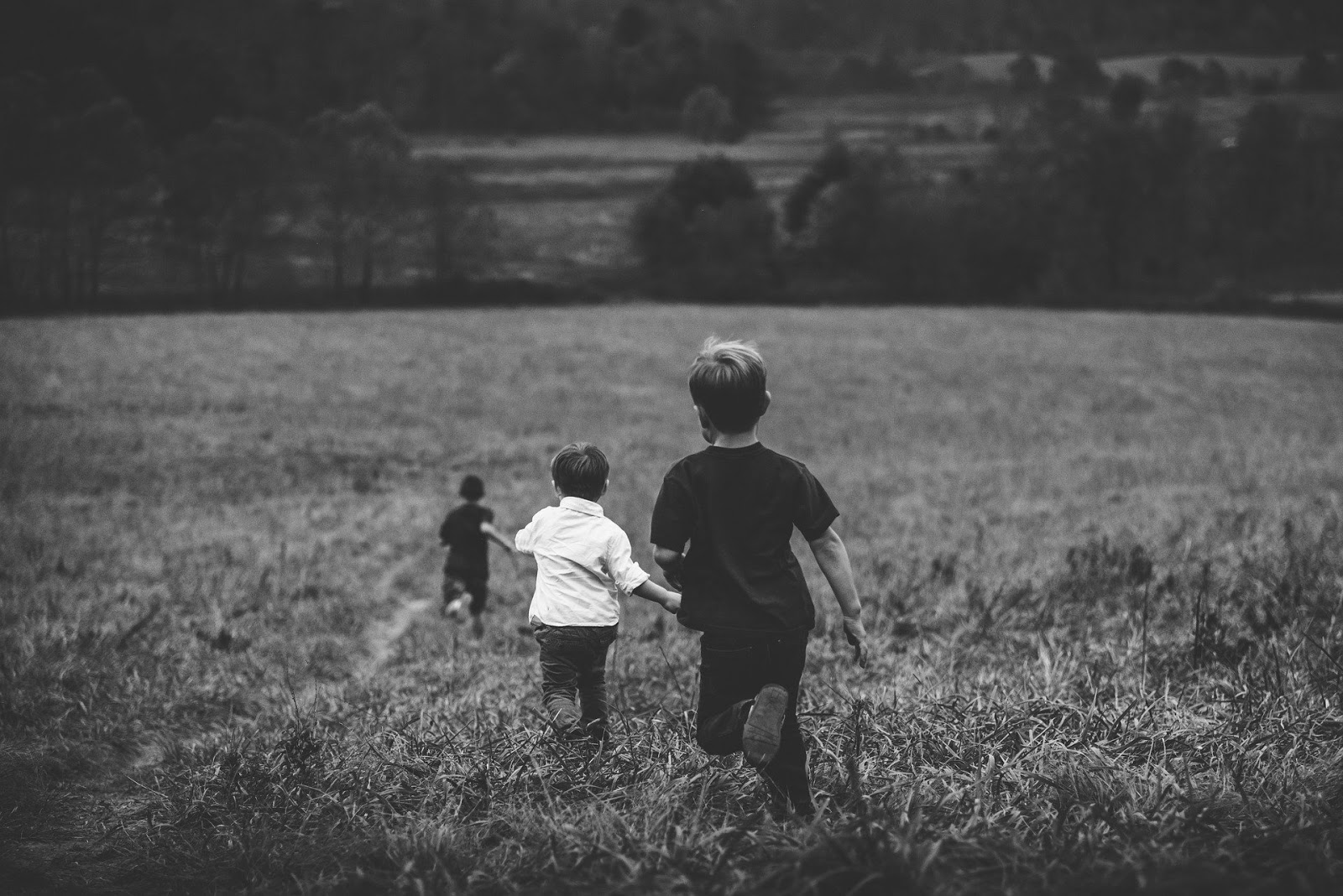 three young children run away from camera in a large field to illustrate a blog post about war movie hitler's children