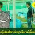 การเลี้ยงกุ้งฝอยในวงบ่อปูนซีเมนต์ เลี้ยงง่ายโตไวราคาดี