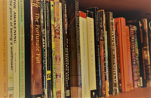 A shelf on the bookshelf of fiction books