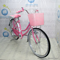 City Bike Evergreen R1 Butterfly 26 Inci