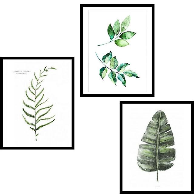 plakat liście, plakat rośliny