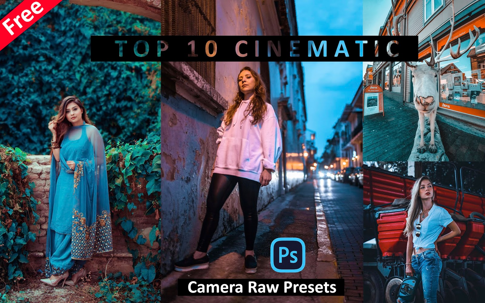 Download Top 10 CINEMATIC Camera Raw Presets for Free