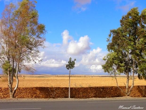 Verso Essaouira