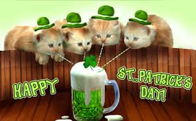 St Patrick's day cat pictures 2018
