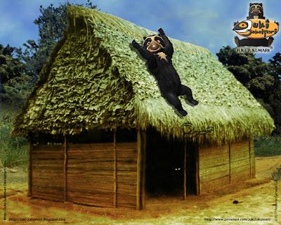 Arquitectura amazónica