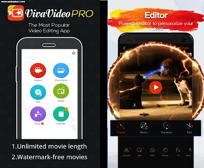 vivavideo pro free
