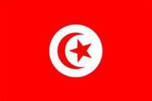 العواصم العربية, Arab capitals, تونس Tunisia