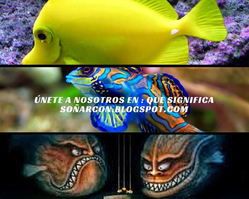 peces mar