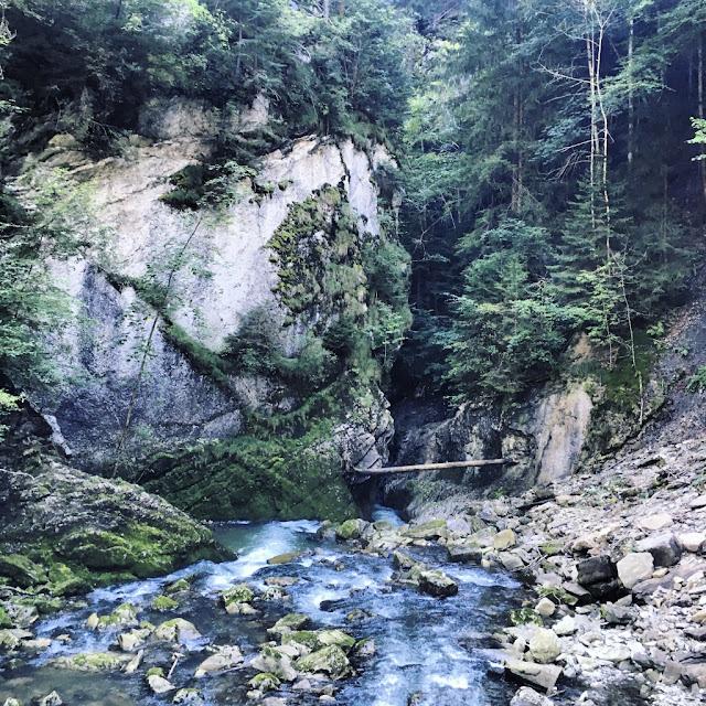 Jaunbach Gorge, Gruyère, Switzerland