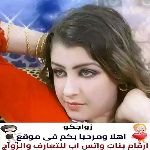 إعلانات زواج و تعارف بالهاتف فى السعوديه 1
