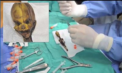 Penelitian Ilmiah Fosil Alien Humanoid Atacama