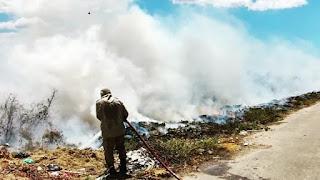 Bombeiros debelam incêndio florestal em Pacatuba; período é de alerta para ocorrências