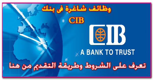 وظائف شاغرة,فرص عمل,بنك cib,اخبار البنوك,وظائف بنك cib,البنك التجاري الدولي cib,وظائف بنوك,cib,