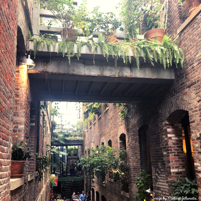 Omaha's Passageway quickly charms with old brick draped with natural foliage.