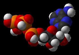 الكيتوزيه هي عملية التمثيل الغذائي الطبيعي. عندما لا يحتوي الجسم على نسبة كافية من الجلوكوز للحصول على الطاقة