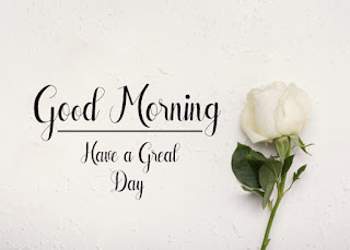 Good Morning Royal Images Download for Whatsapp Facebook36