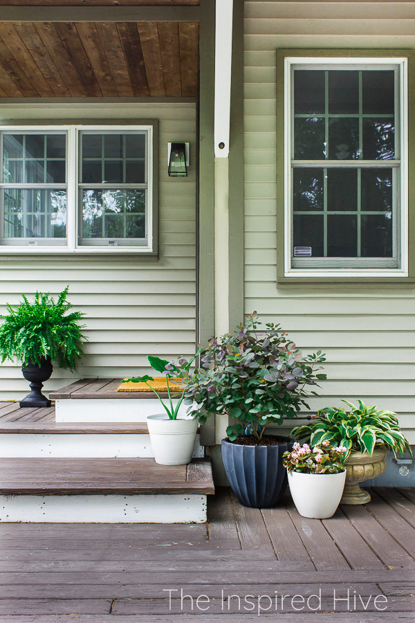 Back door steps with traditional planters