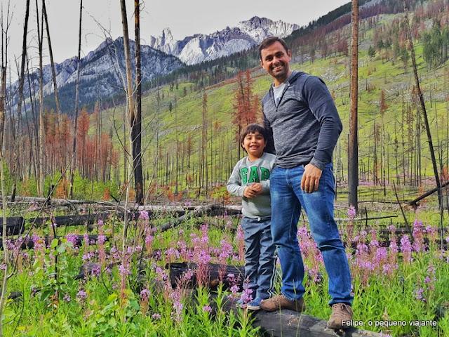 viagens para fazer com seu filho