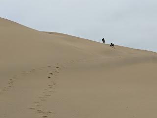 Two people climbing Cape Kiwanda dune.