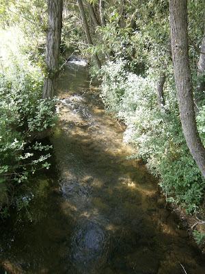 El río Laguna en Campillos Sierra, Serranía de Cuenca, España